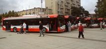 Solaris wrócił do Częstochowy z nowymi autobusami