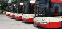 Mielec z jedną ofertą na ofertą na autobusy zwykłe i CNG