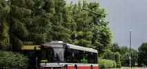 Nowy Sącz. Drogie oferty w przetargu na elektrobusy
