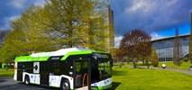 Gorzów Wlkp. kupuje elektrobusy z infrastrukturą do ładowania