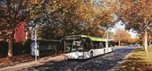 Wrzesień Solarisa: Kontrakty na 107 autobusów dla 6 polskich ośrodków