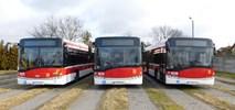 Suchy Las kupuje dwa autobusy
