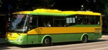 Dębica kupuje 10 autobusów różnych typów