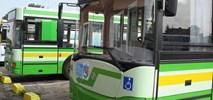 Ełk z 13 mln zł na rozwój transportu. W planach hybrydy