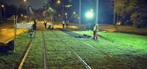 Warszawa: Długość zielonych torów tramwajowych wzrośnie do 25 km