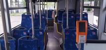 Kołobrzeg z ofertą MAN-a i Scani na autobusy