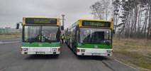Babimost: Kolejne dwa autobusy MZK na płycie lotniska