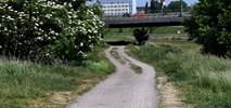 Poznań: Wartostrada pod mostem Chrobrego