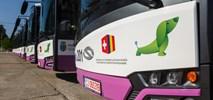 Kluż. Solaris dostarczył pierwsze autobusy elektryczne do Rumunii