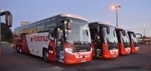 Polonus przewiózł w 2019 r. ok. 4,75 mln pasażerów