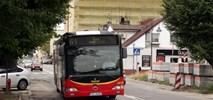Łódź: Więcej autobusów bez biletomatów