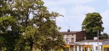 MPK Łódź: Wkrótce kasacje licznych 805N