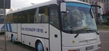 Piotrków Trybunalski: PKS nie kursuje, Mobilis utrzymuje dworzec