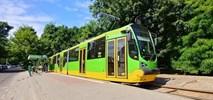 Poznań: Początek prac przy budowie trasy tramwajowej na Naramowice. Wilczak do zamknięcia