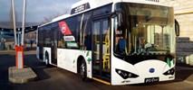 BYD dostarczył pierwszy autobus z Węgier na Węgry