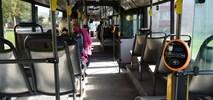 Tallin kupi co najmniej 100 autobusów na gaz