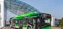 Mediolan. Solaris i Mercedes walczą w przetargu na 250 elektrobusów