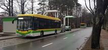 Zielona Góra: Działa pierwsza ładowarka Ekoenergetyki dla elektrobusów