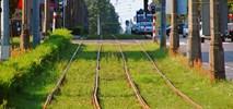 Nieznaczne opóźnienie w remoncie linii tramwajowej w Częstochowie