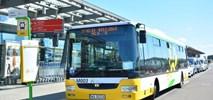 Struzik: Potrzeba pół mld zł rocznie na dobrą komunikację autobusową na Mazowszu