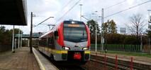 Łódź: Będą przystanki tramwajowe nad peronami kolejowymi na Żabieńcu?