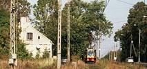 Pabianice: Wniosek tramwajowy formalnie przyjęty przez zarząd województwa