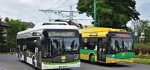 Tyskie Linie Trolejbusowe kupują… elektrobusy