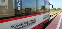 Poznańska Kolej Metropolitalna pojedzie do Gniezna