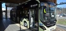 Goeteborg. W przyszłym roku w mieście będzie 220 elektrobusów