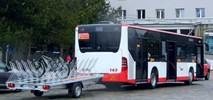 Z Częstochowy do jurajskiego Olsztyna autobusem z przyczepą rowerową