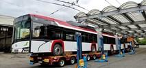 Gdynia przetestuje 24-metrowy trolejbus