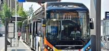 Lublin kupuje 20 elektrobusów z systemem ładowania