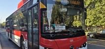 Santiago kupi kolejne 183 autobusy elektryczne od BYDa