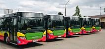 Biała Podlaska otrzymała pięć autobusów na biopaliwo od Scanii
