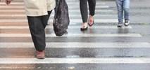 Senat. Komisja poparła prace nad pierwszeństwem pieszych