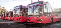 Mendoza. Kolejne chińskie elektrobusy w Ameryce Południowej