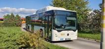 MPK Wrocław testuje autobus gazowy od Mecedesa