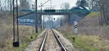 Olsztyn: Na linii do Gutkowa powstanie dodatkowy, trzeci przystanek