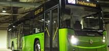 Rzym. Karsan dostarczył 227 autobusów