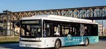 Częstochowa: Tylko Autosan zainteresowany najmem elektrobusów i ładowarek