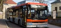 Ostrołęka: Trzy oferty na autobusy gazowe. Także z Turcji