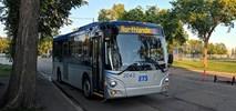 Kanada. Victoria kupuje 71 autobusów CNG