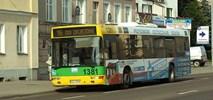 Elbląg szuka przewoźnika dla miejskich linii autobusowych