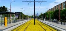 Bratysławskie tory tramwajowe mienią się żółcią