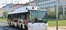 Praga wprowadzi trolejbusy na cztery kolejne linie autobusowe