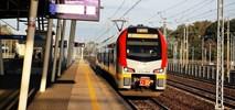 Łódź: ŁKA wraca na Olechów – z zaledwie jednym kursem