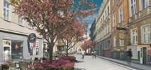 Poznań: Kwiatowa zmieni się nie do poznania. Wybrany wykonawca