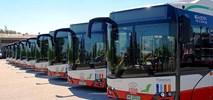 Radom w przededniu wyjazdu elektrobusów