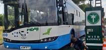 GITD stwierdza liczne nieprawidłowości komunikacji miejskiej w Rybniku