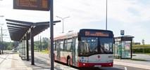 Gdańsk: W przyszłym roku 84 przystanków z tablicami informacji pasażerskiej